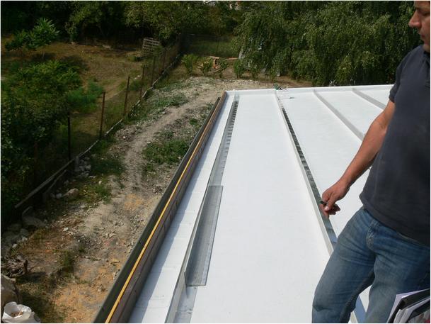 Extenzív zöldtető építése ferde tetőn