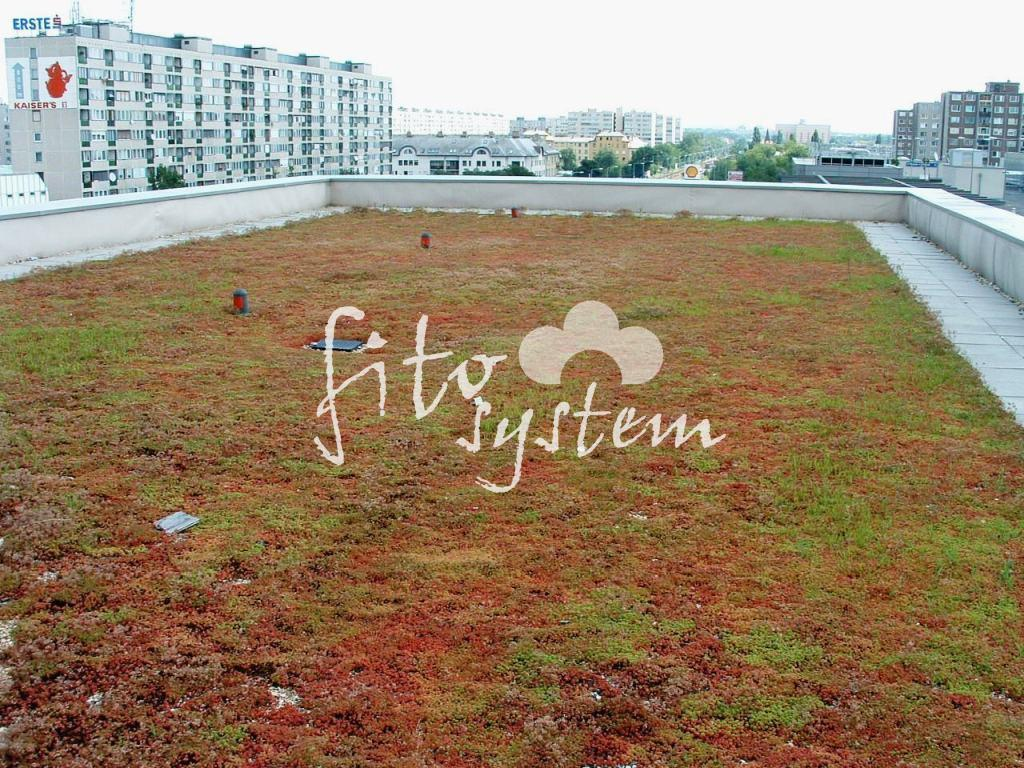 Budapest Bevásárlóközpont - Fito System - extenzív zöldtető