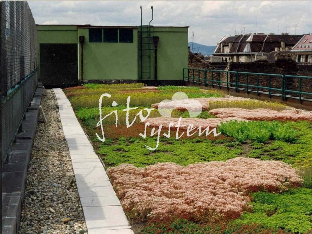 Budapest Irodaház - Fito System - extenzív zöldtető