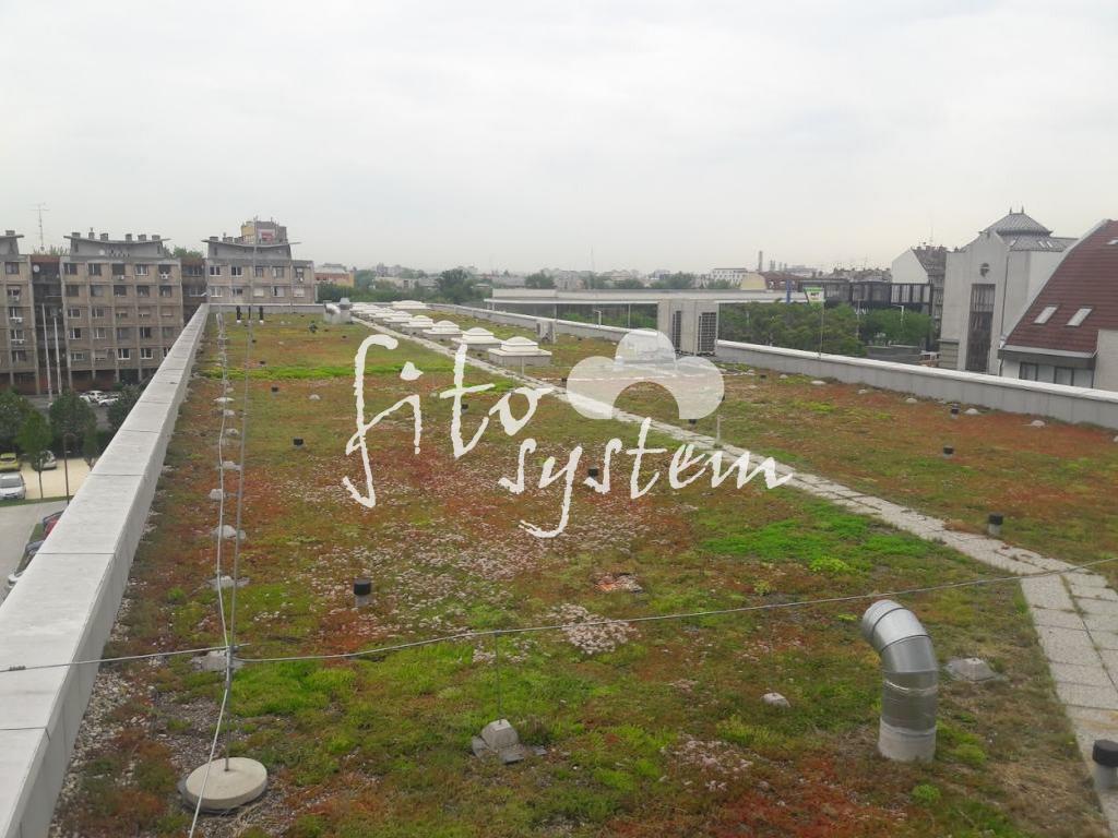 Budapest Oktatási központ - Fito System - extenzív zöldtető