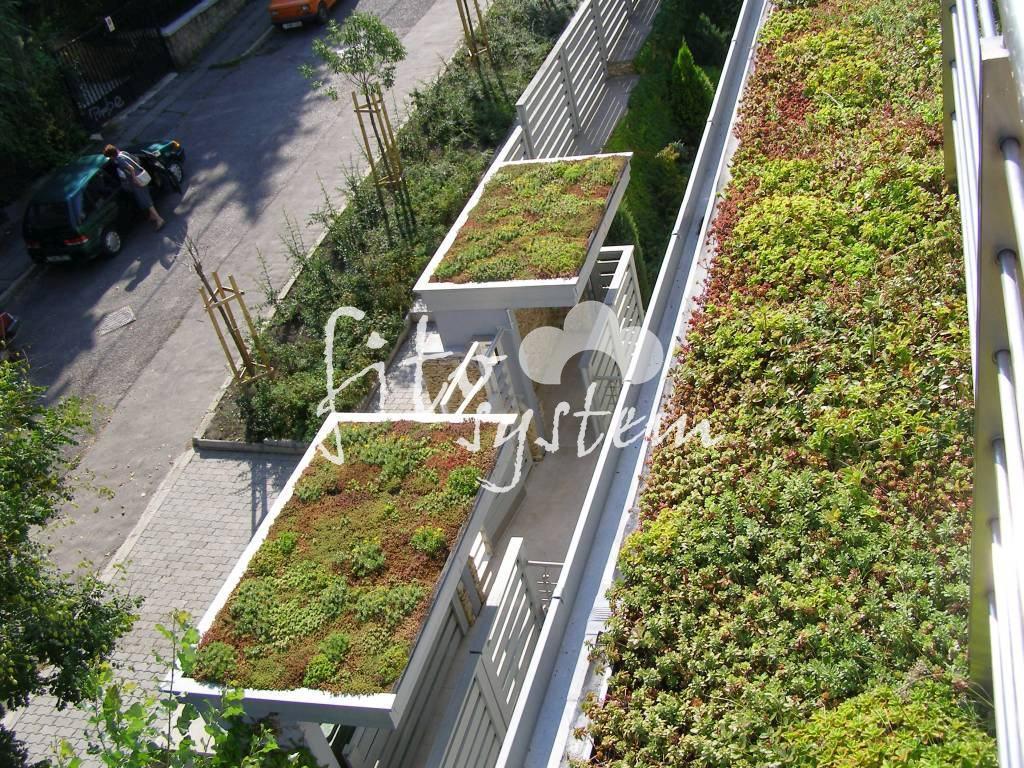 Budapest Társasház - Fito System - extenzív zöldtető