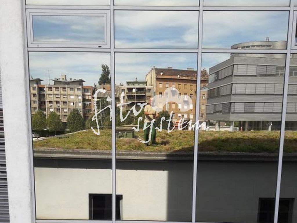 Budapest szervíz Tükörkép - Fito System - extenzív zöldtető
