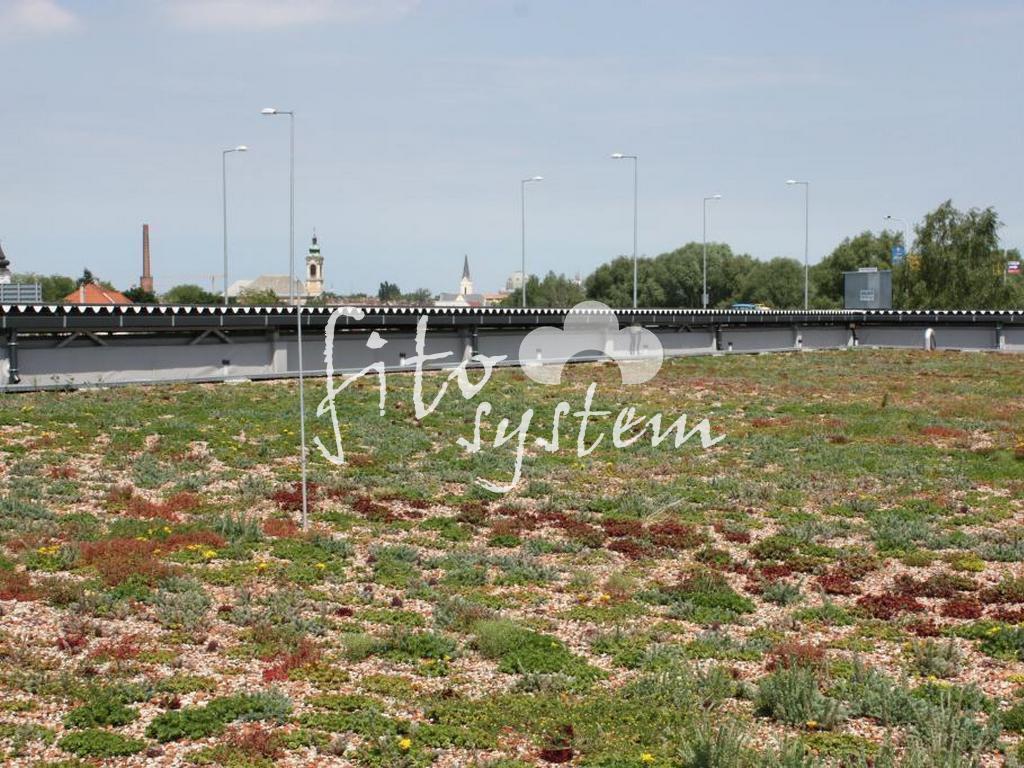 Győr Bevásárlóközpont - Fito System - extenzív zöldtető