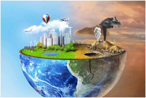 Fito Tech zöldtető rendszer -Klímaváltozás kihívásaihoz igazodó technológia