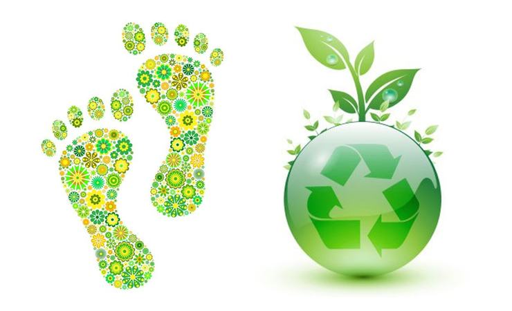Fito Tech zöldtető rendszer -Ökotudatos tervezés